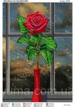 Роза На Окне. А3 (набор 850 рублей) ЮМА-3245