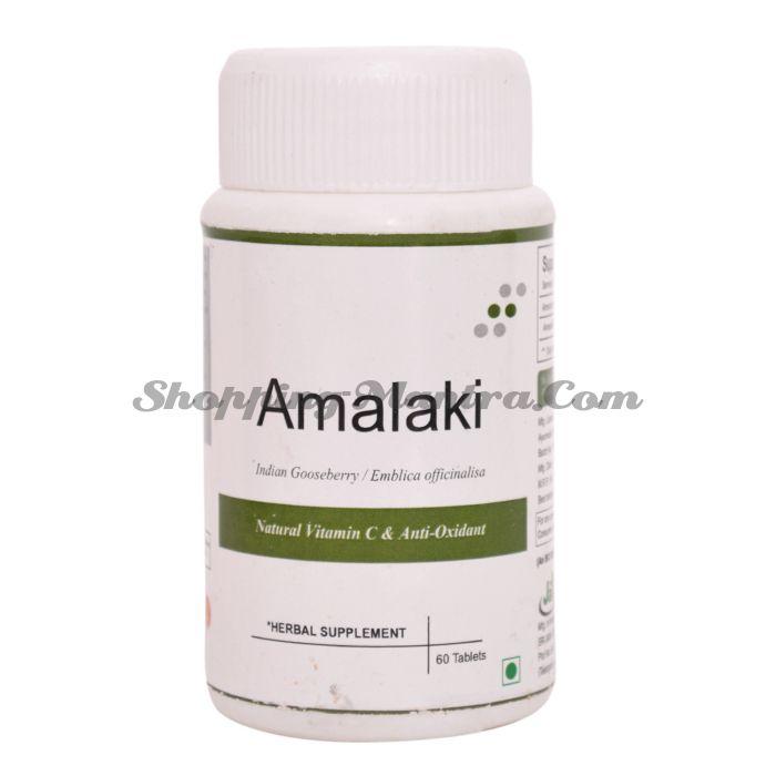 Амла в таблетках натуральный антиоксидант Джайн Аюрведик | Jain Ayurvedic Amlaki Tablets