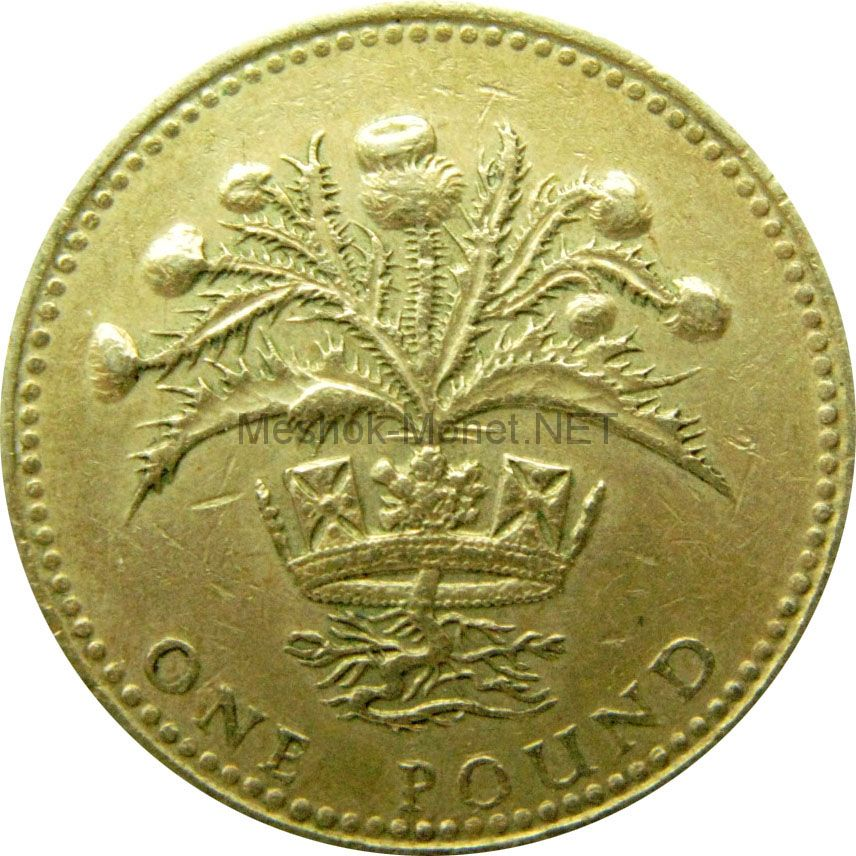 Великобритания 1 фунт 1989 г.