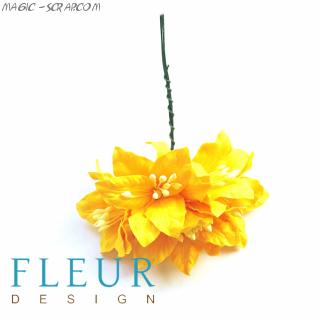 Цветы Лилии желтые