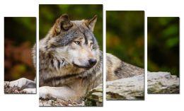 Одинокий волк 2