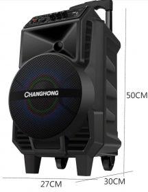 Переносная мощная портативная колонка с радиомикрофоном (Bluetooth/Радио/USB)