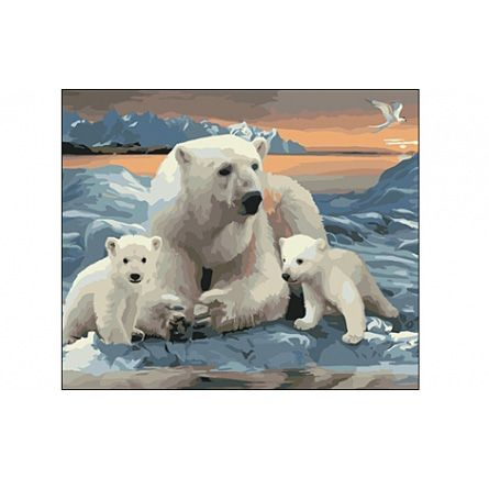 Роспись по холсту Белые медведи 40х50см