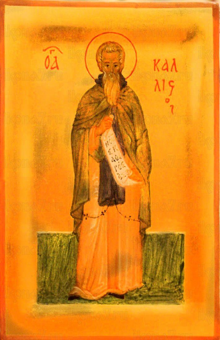 Каллист Константинопольский (Ксанфопула) (рукописная икона)