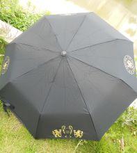 Зонт футбольного клуба Челси