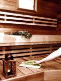 SINI Laudepesuri Губка-щетка для ручной уборки