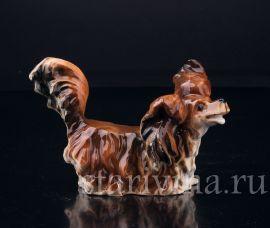 Собака Длинношерстная такса, Германия, нач. 20 в., артикул 03243