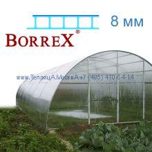 Теплица Фермер 5.6 х 28 с поликарбонатом 8 мм BorreX