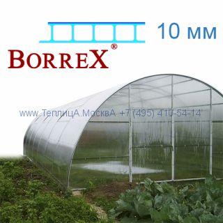 Теплица Фермер 5.6 х 22 с поликарбонатом 10 мм BorreX