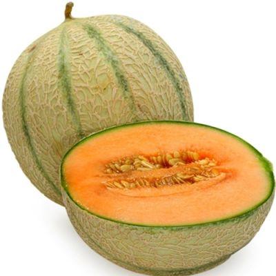 Cantaloupe (TPA)