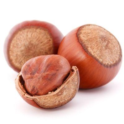Hazelnut (TPA)