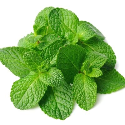 Spearmint (TPA)