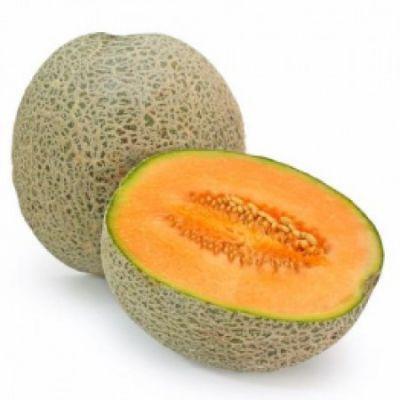 Cantaloupe (FW)