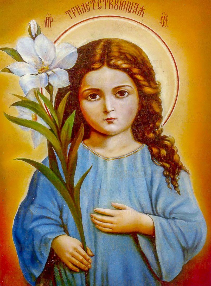 Икона Трилетствующая икона Божией Матери