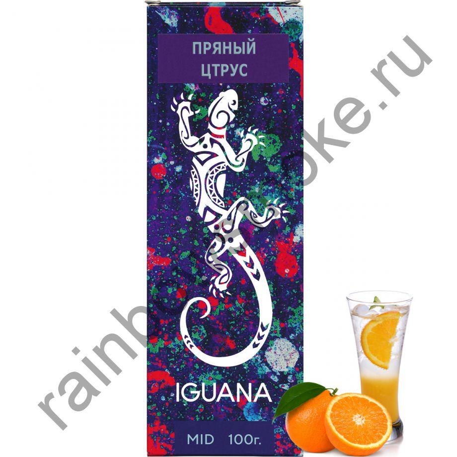 Iguana 100 гр - Spicy Citrus (Пряный Цитрус)
