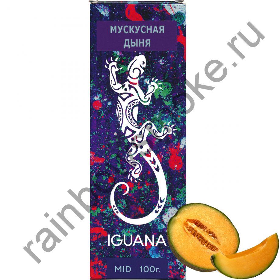 Iguana 100 гр - Cantaloupe (Мускусная Дыня)