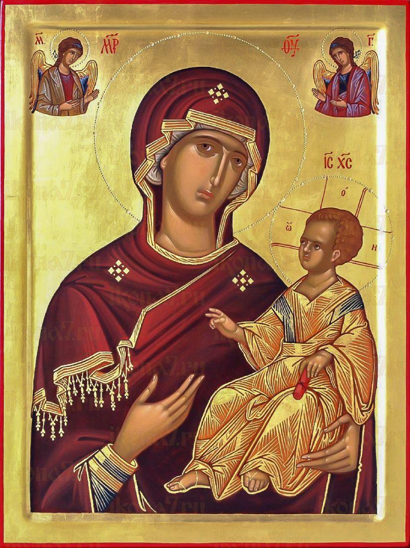 Душеспасительница (Психосострия) икона Божией Матери