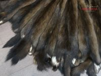 Шубный набор дикого соболя баргузин фото шкурки