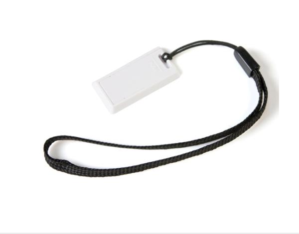 32GB USB-флэш корпус для флешки UsbSouvenir US220, белая