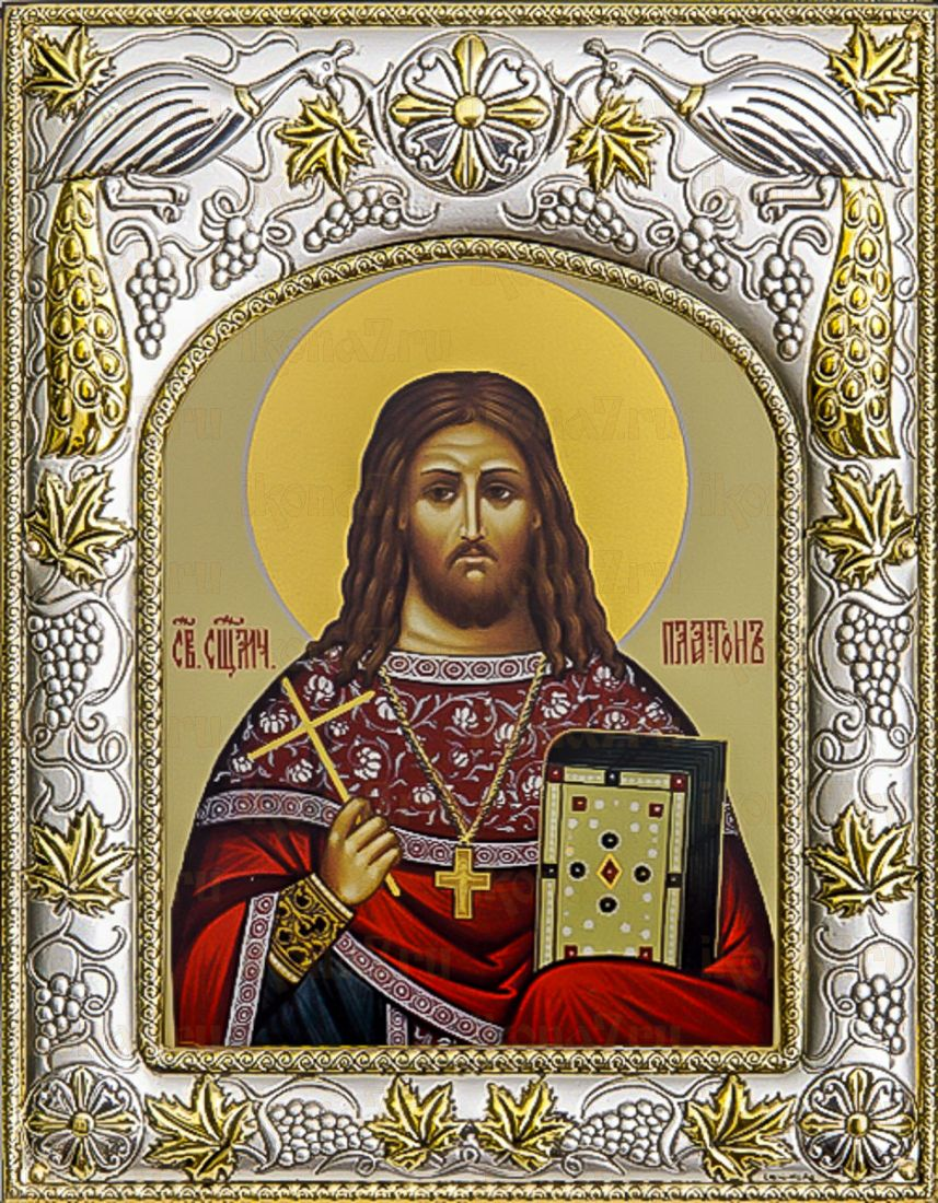 Платон Горных (14х18), серебро