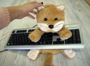 Подарок для программиста - подушка Котик.