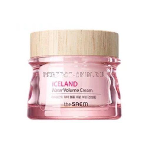 The Saem Iceland Water Volume Hydrating Creamfor Dry Skin 80ml