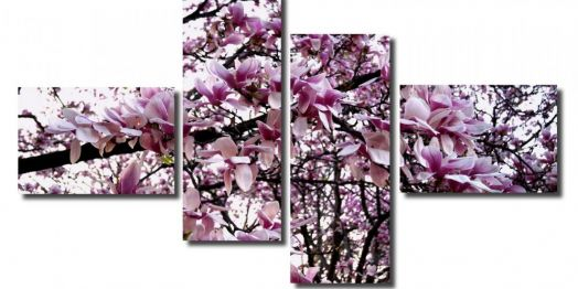 Модульная картина Розовое цветение