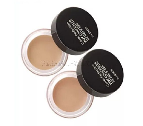 The Saem new Cover Perfection Pot Concealer 01 Clear Beige 4g