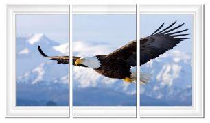 Полет орла 2