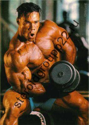 Курс  (Тестостерон энантат+пропионат+метан+станозолол+пкт)