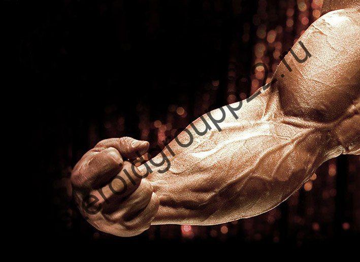 Курс на массу (тестостерон + пкт)