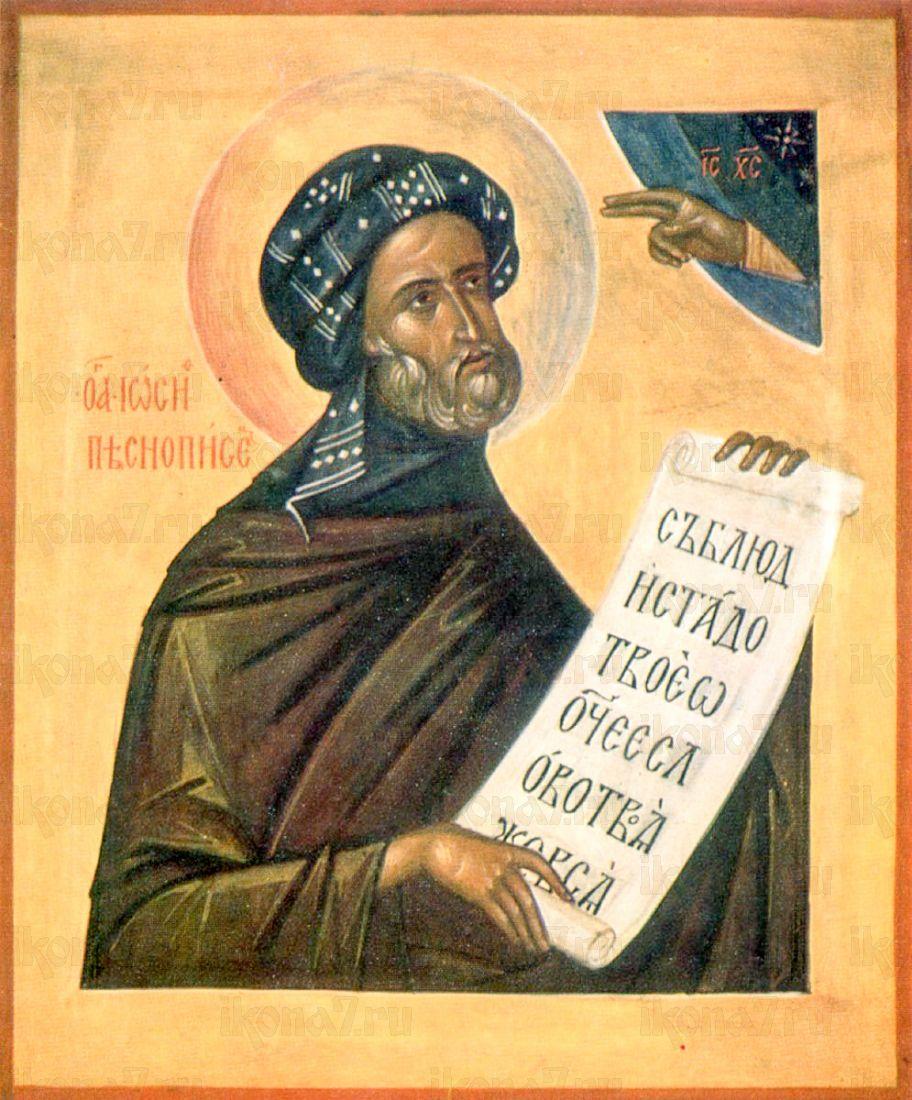 Икона Иосиф Песнописец