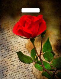 """Пакет с  прор. ручкой 38*45 см """"Китайская роза"""" 50 шт. 60 мкм"""