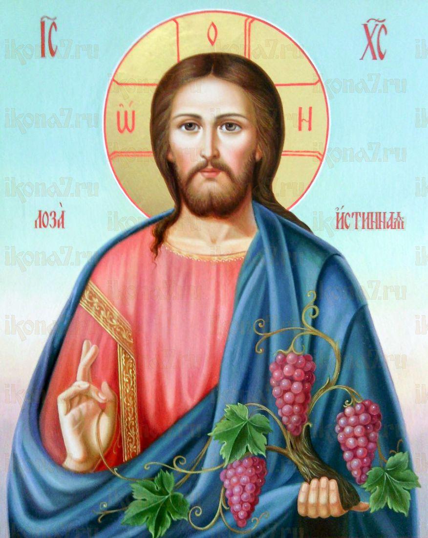 Икона Христос Лоза Истинная (Виноградная Лоза)