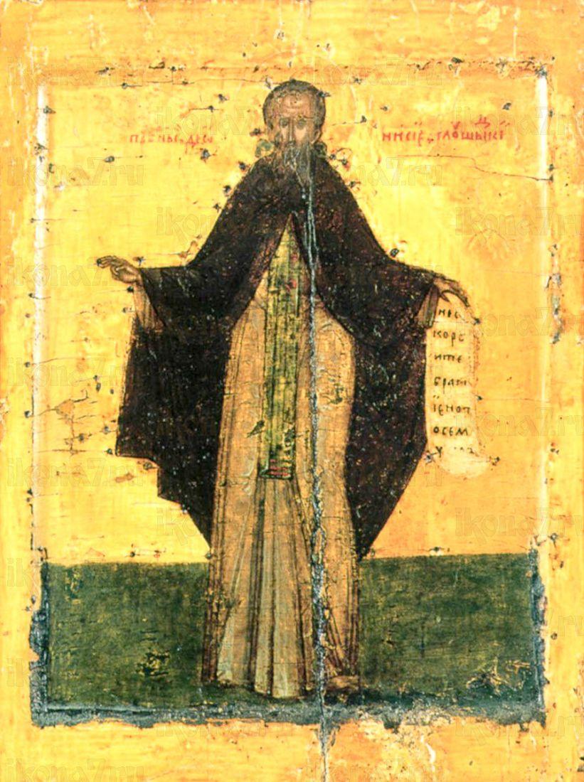Дионисий Глушицкий (копия иконы 16 века)