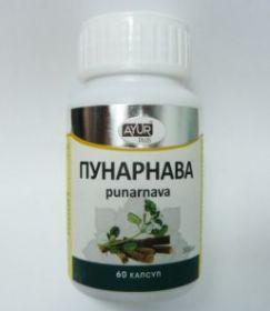 ПУНАРНАВА  60 капсул (AYURPLUS)