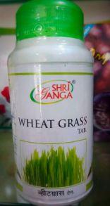 Wheat Grass Ростки пшеницы Шри Ганга
