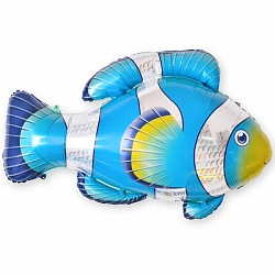 Рыба-клоун голубая