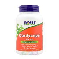 Cordyceps (Кордицепс) - 90 капс