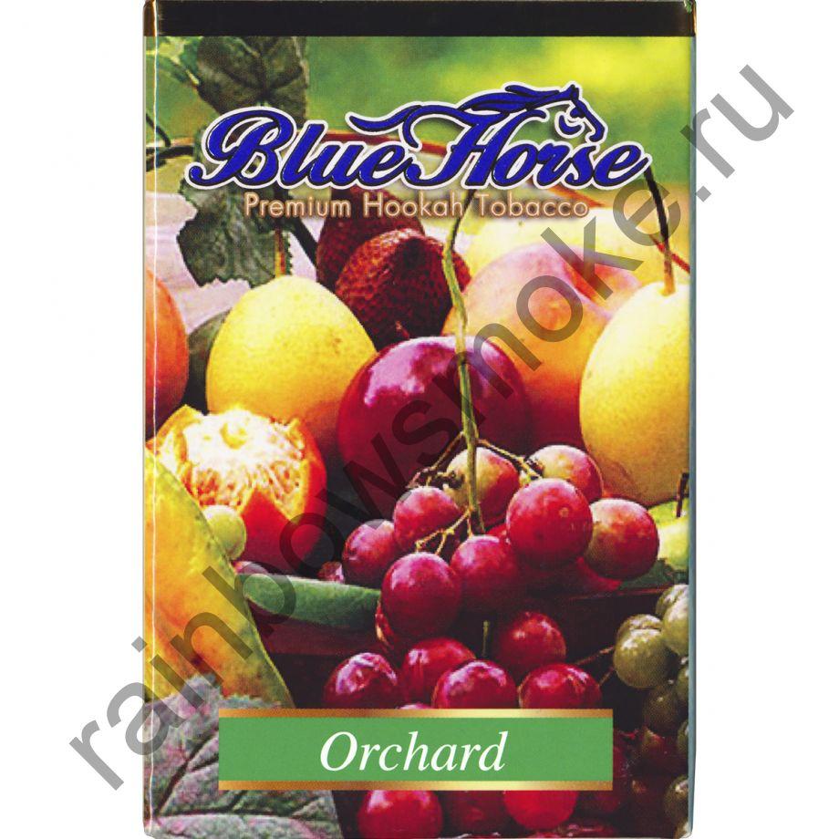 Blue Horse 50 гр - Orchard (Ягодный Сад)