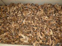 Перегородка Грецкого ореха уп 500гр
