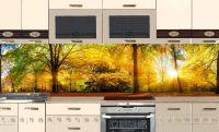 Фартук для кухни - Осенний парк купить | интерьерные наклейки