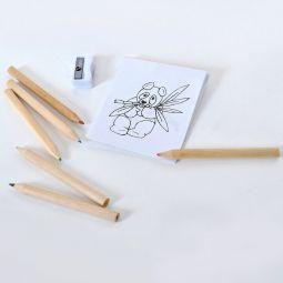 заказать наборы цветных карандашей 6 штук с раскраской и точилкой