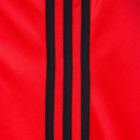 Вратарский свитер adidas Goalkeeper Jersey PL красный