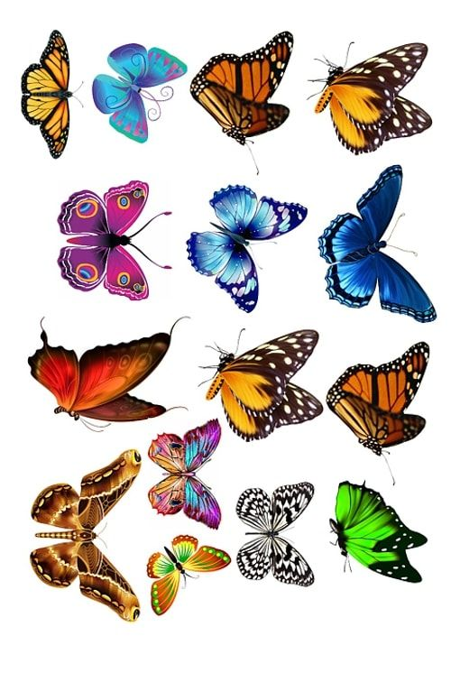 Вафельная картинка Бабочки  (3)