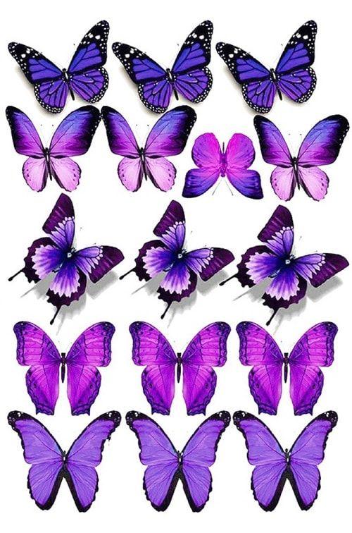 Вафельная картинка Бабочки  (4)