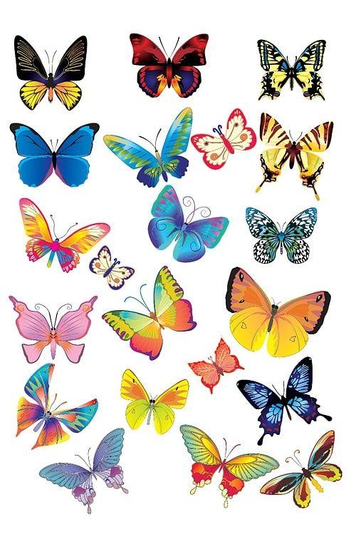 Вафельная картинка Бабочки  (5)