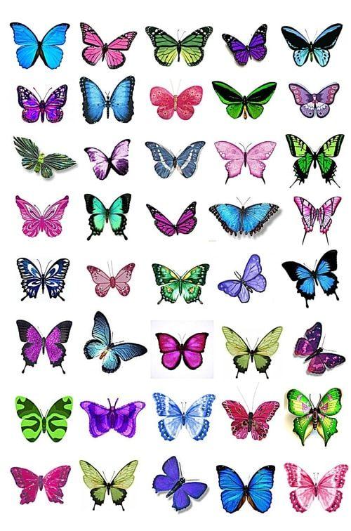 Вафельная картинка Бабочки  (6)
