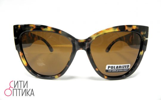 Polarized 8042
