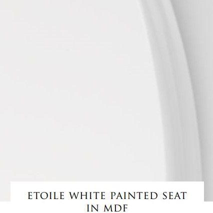 Сиденье с крышкой для унитаза Devon&Devon Etoile из мдф ФОТО